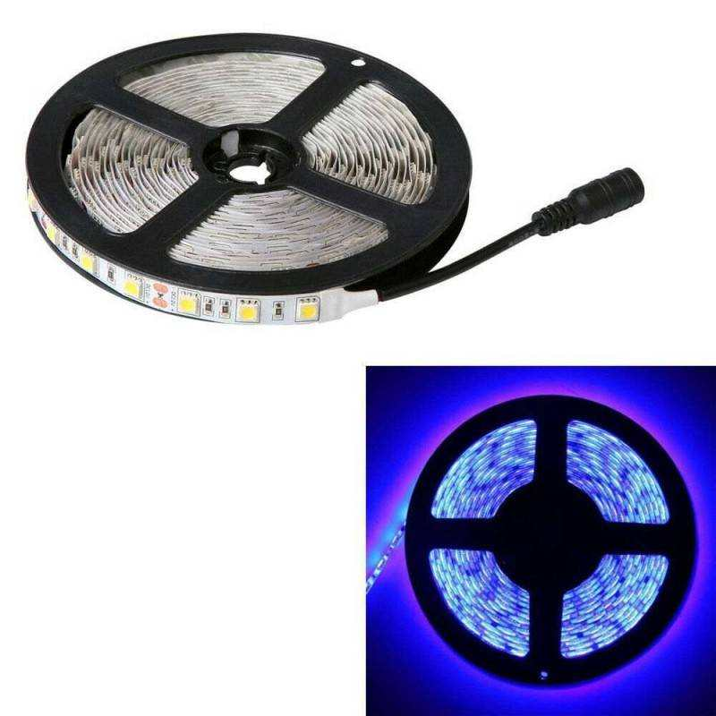Striscia led 12v 5 metri ip65 bobina luce led blu for Luce led striscia