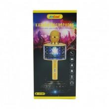 Microfono con cassa altoparlante senza fili Bluetooth con eco karaoke USB TF FM