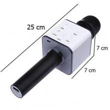 Microfono wireless bluetooth cassa integrata echo batteria karaoke altoparlante