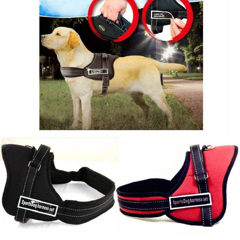 Pettorina Taglia M Sportdog Harness Cinghia per cani