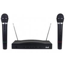 Coppia microfoni wireless a doppio canale con centralina VHF bicanale kit voce